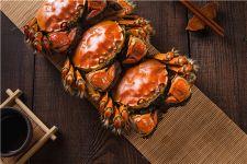 體寒的人可以吃螃蟹嗎